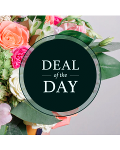 Deal of the Day Bouquet Flowers